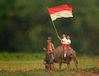 Kepada Pak Presiden, dari Siswa SD Lampung Timur