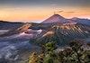 Belantara Hutan Taman Nasional Bromo Tengger Semeru, Jantung Kehidupan Suku Tengger