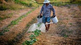 Gotong-Royong Bantu Para Petani dengan Platform ini