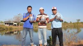 Profil PNS Inspiratif 2018: Inovasi Eddy Nurcahyono Lestarikan Rajungan dan Kepiting