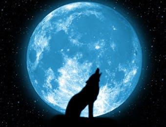 Ingin Melihat Gerhana Bulan Total? Baca Dulu 5 Hal Ini