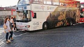 Curi Perhatian, Bus Bergambar Indonesia Ada di Piala Dunia Rusia 2018!