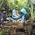 Ubi Banggai, Tanaman yang Tak Bisa Lepas dari Masyarakat Banggai Kepulauan