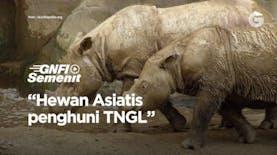Hewan Asiatis penghuni Taman Nasional Gunung Leuser