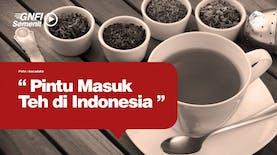 Kapan Pertama Kali Teh di Indonesia?
