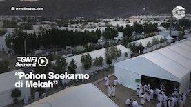 Pohon Soekarno di Mekah