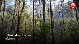 Rehat Sejenak di Taman Hutan Raya